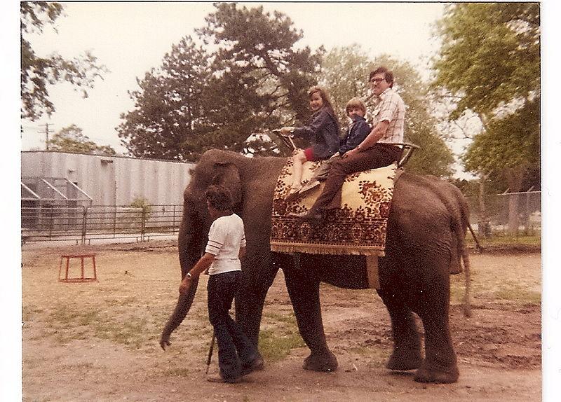 Kids, ken and elephant